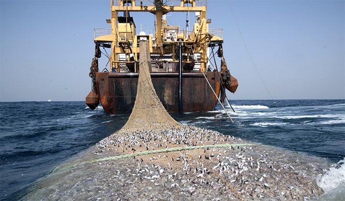 naturresurs i form av fiskebruk