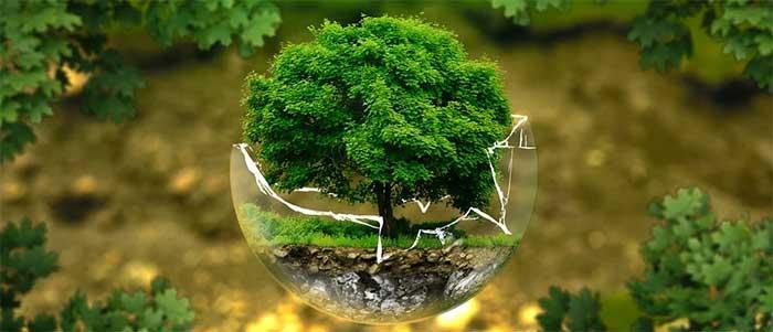 Gröna investeringar